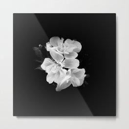 geranium in bw Metal Print