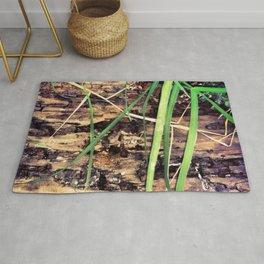 Rotting Wood & Grass Rug