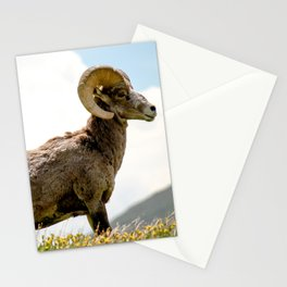 Bighorn Sheep On Humboldt Peak, Colorado Stationery Cards