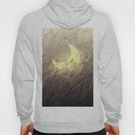 Moon Grass  Wheat and Night Field Hoody