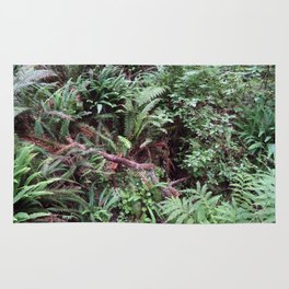 Redwood Rainforest Ferns Rug