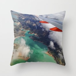 Birdeye Throw Pillow