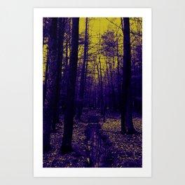 Woods stream Art Print
