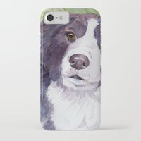 border collie iPhone & iPod Cases featuring Border collie 3 by Doggyshop