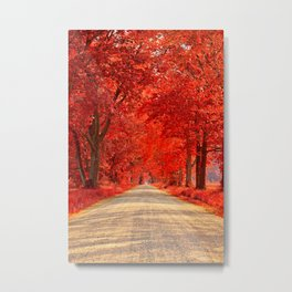Red Forest Autumn Path Metal Print