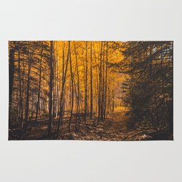 Autumn, yellow forest Rug