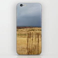 Horsetooth Hills iPhone & iPod Skin