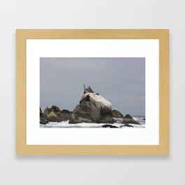 Ocean Life 2 Framed Art Print