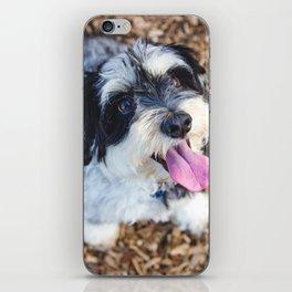 Happy Pup iPhone Skin