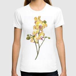 Yellow Phalaenopsis Orchid Traditional Artwork T-shirt