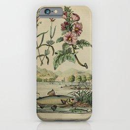 Flower lavande lavatere (Fr)1 iPhone Case