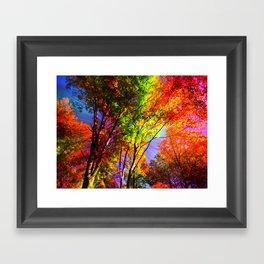 Magic Trees Framed Art Print