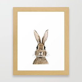 cute innocent rabbit Framed Art Print
