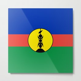 Flag of new caledonia Metal Print