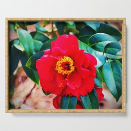 Rich Red Camellia Serving Tray