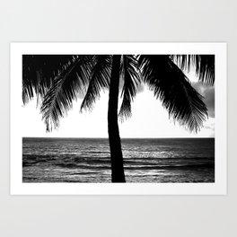 Tropical Darkroom #275 Art Print