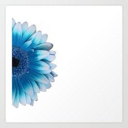 colored summer ~ blue gerbera Art Print