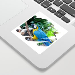 Blue Yellow Macaw. Parrot Sticker
