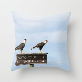 Crested Cara Cara Hawks Throw Pillow