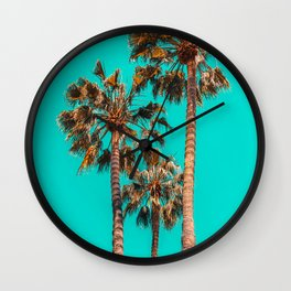 Palm Spring Trees, Breezy Palm, California Laguna Beach, Sunny California Palm Tree Leaves Wall Clock
