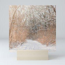 Snow Covered Trails Mini Art Print