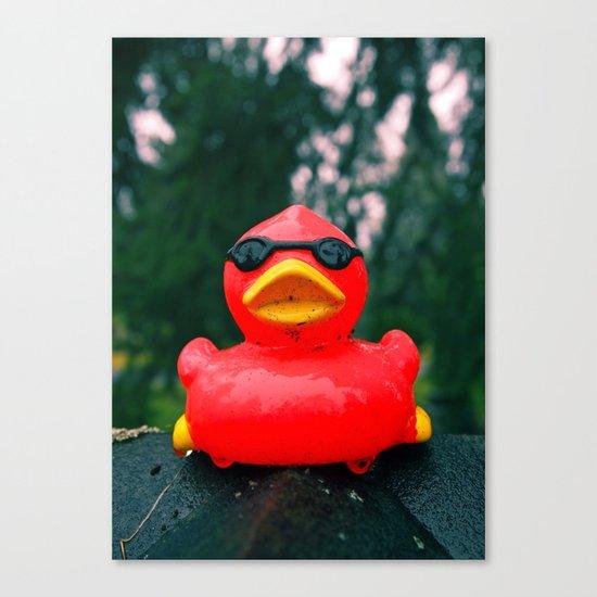 Northwest duck Canvas Print