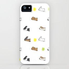 Bunny Rabbit Breeds iPhone Case