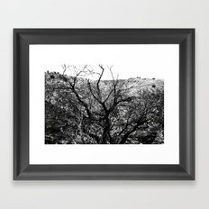 Castle Tree Framed Art Print