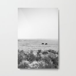 Roaming Bison Metal Print