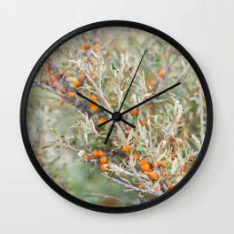 Branch from firethorn. Wall Clock