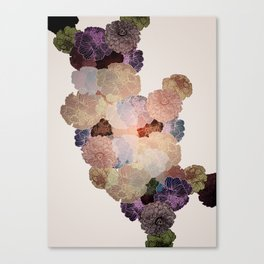 Florals // Pattern III Canvas Print