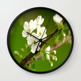 Cherry Tree Branch With White Flowers #decor #society6 Wall Clock