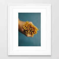 pasta Framed Art Prints featuring Pasta by Laura Baay