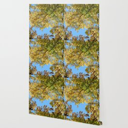 Blue Skies and Autumn Leaves Wallpaper