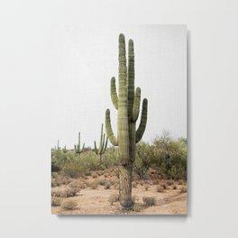 Arizona's Cactus Metal Print