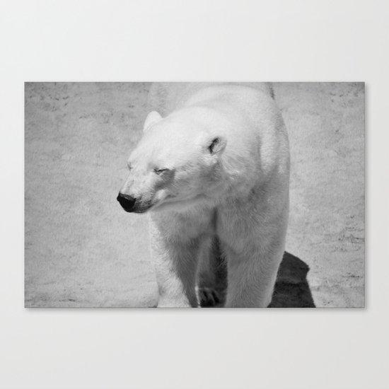 Polar Bear Photography   Canada   Adventure   Wild   Mammal   Nature   Wildlife   Travel Canvas Print