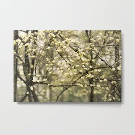Let's Get Lost In The Dogwoods Metal Print