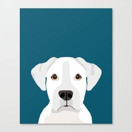 White Boxer pet portrait cute dog lover rescue dog lover Boxers portrait dog breeds Canvas Print