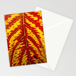 Tiger Leaf Stationery Cards