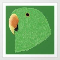 Eclectus [Male] Parrot Art Print