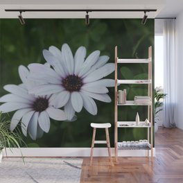 Friendship - Two African Daisies Wall Mural