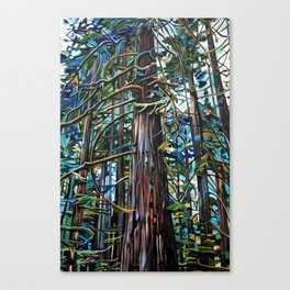 Tofino Rain Forest Painting Canvas Print