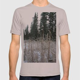Falltime in Watervalley T-shirt