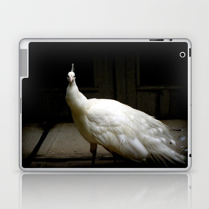 Elegant white peacock vintage shabby rustic chic french decor style woodland bird nature photograph Laptop & iPad Skin