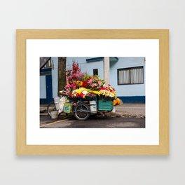 Flower Cart in Mexico City Framed Art Print