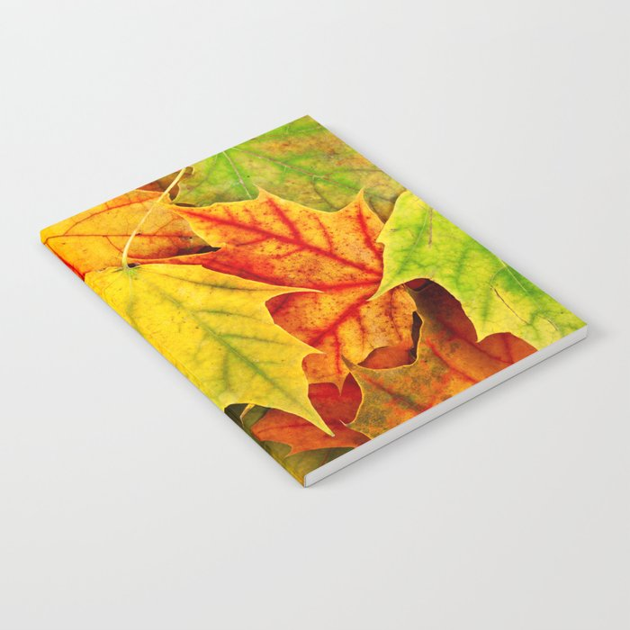 Color Leaves Notebook