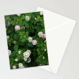 Clover flowers green and white floral field Stationery Cards