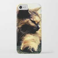hemingway iPhone & iPod Cases featuring Hemingway Cat by Derek Fleener