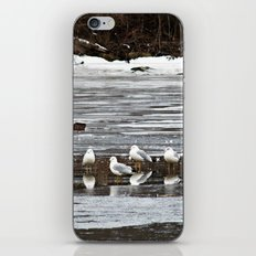 Walking On Water iPhone & iPod Skin