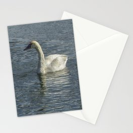 Two Trumpeter Swans at Oxbow Bend Stationery Cards